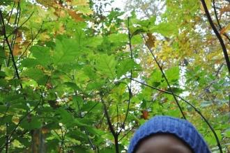 021_filip_i_owoce_jesieni
