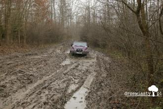 029_off-roadowe_andrzejki_w_palacu_zamoyskich