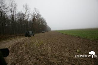 050_off-roadowe_andrzejki_w_palacu_zamoyskich